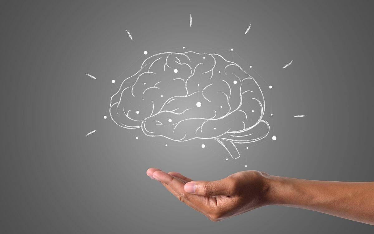 子供の脳の成長を促すおすすめのサプリメント